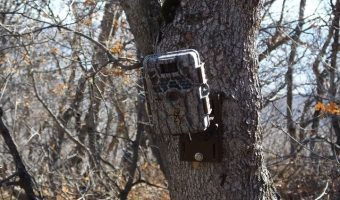 best trail camera