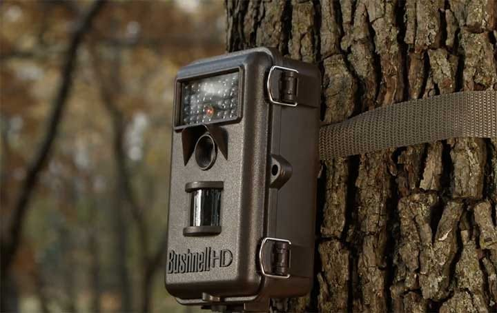 game-trail-camera